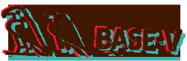 BASE-V
